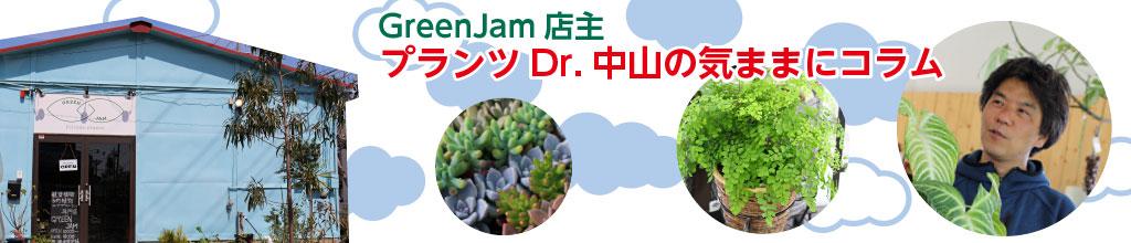 GreenJam店主プランツドクター中山の気ままにコラム