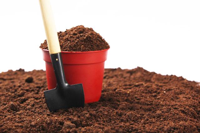 植木鉢の土選び