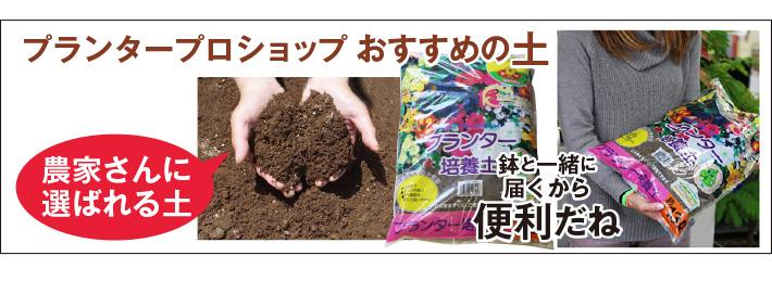 おすすめ培養土