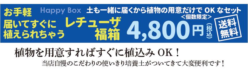 レチューザ【クアドロジョーカー21】福袋