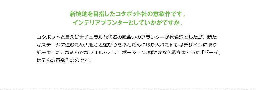 コタポット【ゾーイ53】