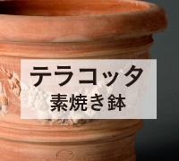 テラコッタ鉢