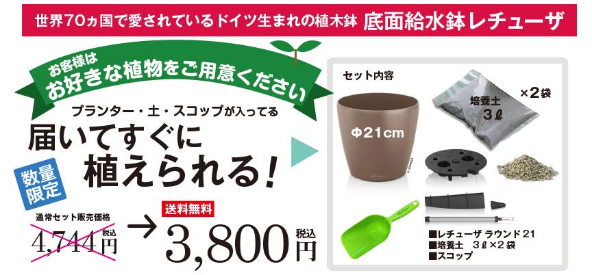 数量限定!送料無料で3800円