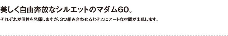 プラストコレクション【マダム60】