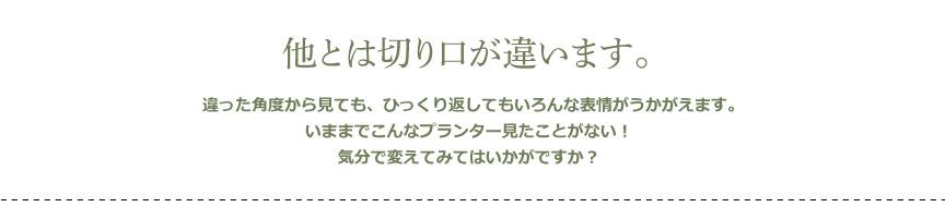 プラストコレクション【リバース】