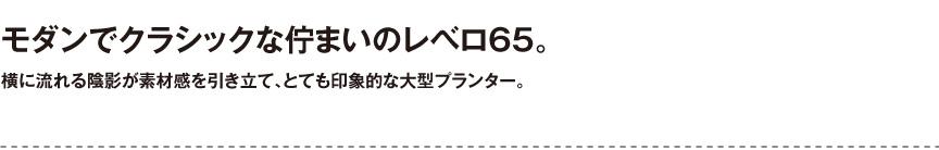 プラストコレクション【レベロ65】