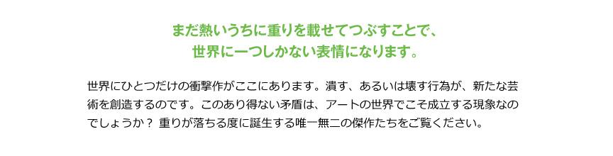プラストコレクション【セービングスペース】