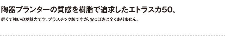 ユーロスリープラスト【エトラスカ50】