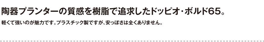 ユーロスリープラスト【ドッピオ・ボルド65】