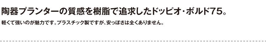 ユーロスリープラスト【ドッピオ・ボルド75】