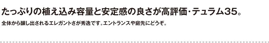 ユーロスリープラスト【テュラム35】