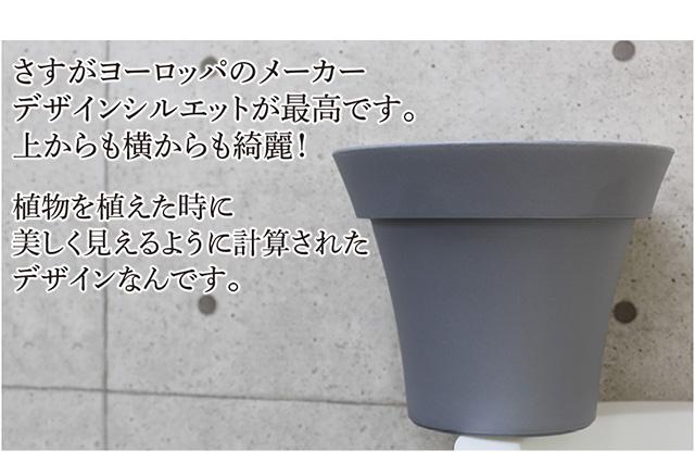 ユーロスリープラスト【ミーシャ40】
