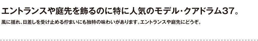 ユーロスリープラスト【クアドラム37】