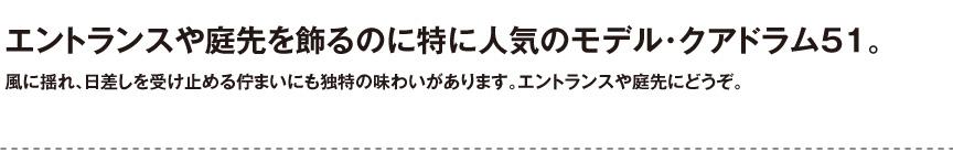ユーロスリープラスト【クアドラム51】