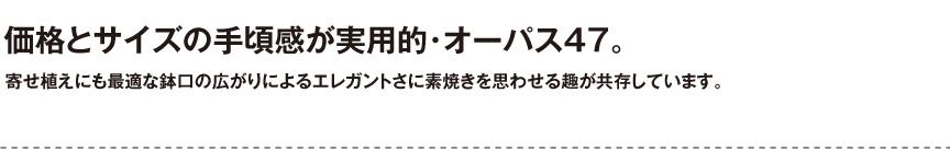 ユーロスリープラスト【オーバス47】
