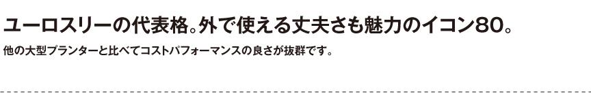 ユーロスリープラスト【イコン80】