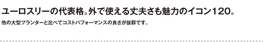 ユーロスリープラスト【イコン120】
