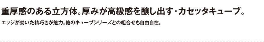 ユーロスリープラスト【カセッタキューブ】