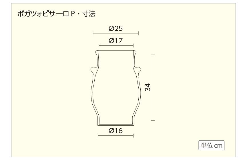 ボガツォピサーロP寸法図