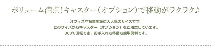 レチューザ【クラシコジョーカー43】