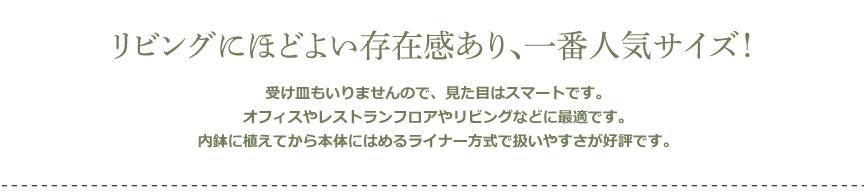レチューザ【クアドロジョーカー43】