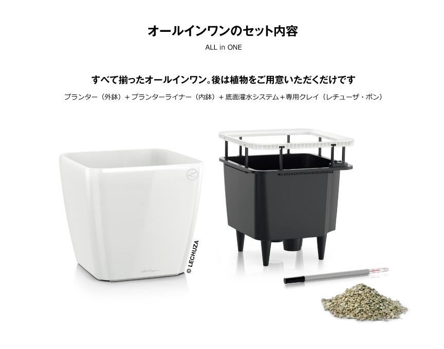 レチューザ【クアドロジョーカー50】