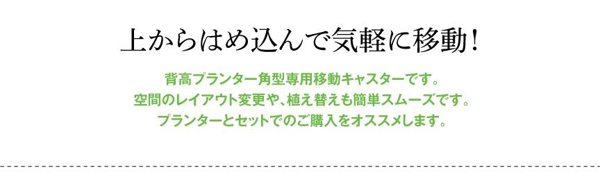 レチューザ【角キャスター30】