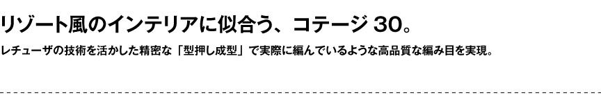 レチューザ【コテージ30】