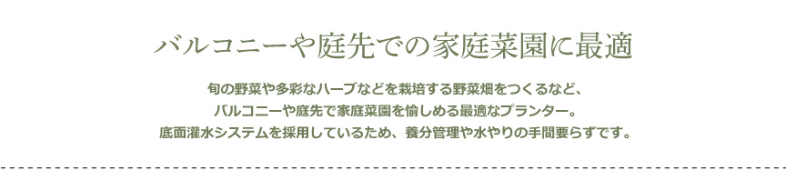 レチューザ【コテージトリオ30】