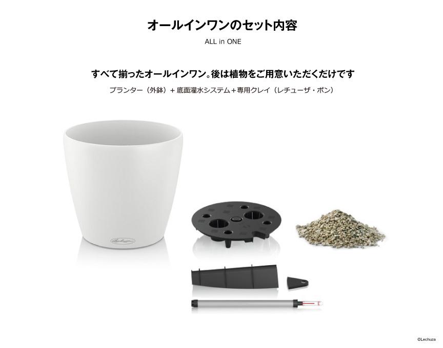 レチューザ【ラウンド21】