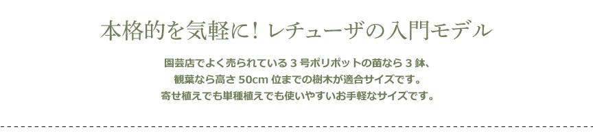 レチューザ【ラウンド28】