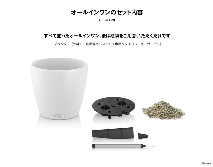 レチューザ【ラウンド35】