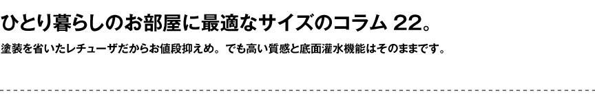 レチューザ【コラム22】