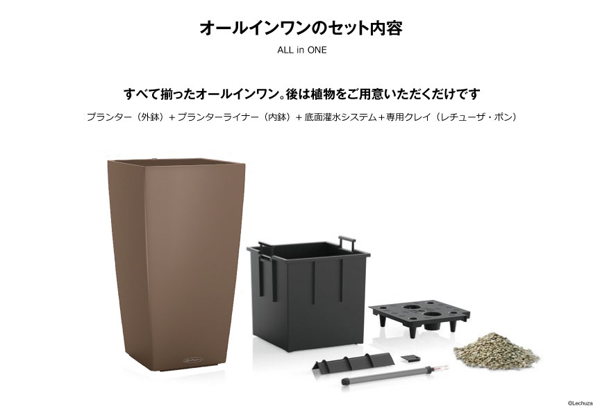 レチューザ【コラム40】