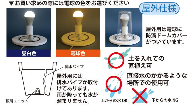 屋内仕様、電球色をお選びください