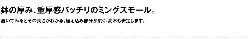 セラルンガデザイナーズ【ミングスモール】