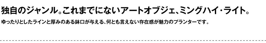 ライト【ミングハイライト屋外】
