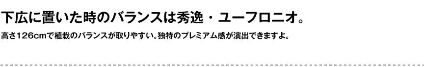 セラルンガデザイナーズ【ユーフロニオ】