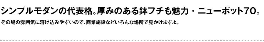 セラルンガデザイナーズ【ニューポット70】