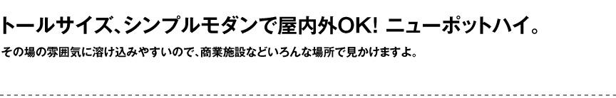 セラルンガデザイナーズ【ニューポットハイ】
