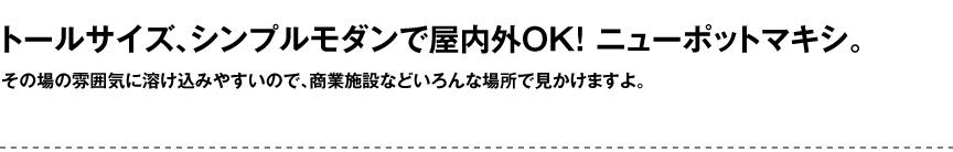 セラルンガデザイナーズ【ニューポットマキシ】