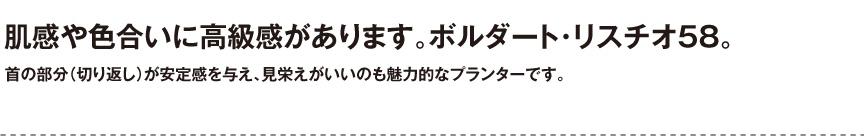 伝統樹脂【ボルダートリスチオ58】