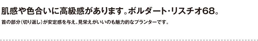 伝統樹脂【ボルダートリスチオ68】