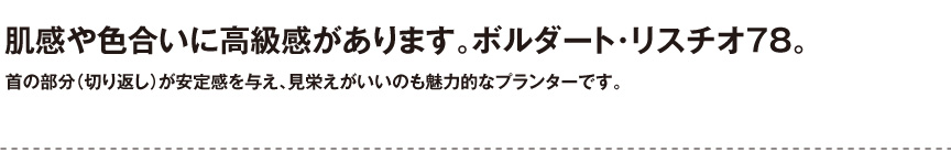 伝統樹脂【ボルダートリスチオ78】