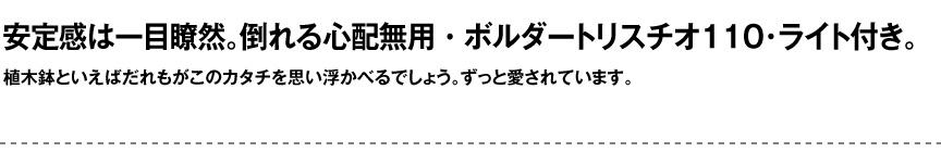 ライト【ボルダートリスチオライト110屋外】