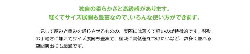 伝統樹脂【カメリア47】