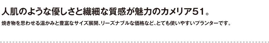 伝統樹脂【カメリア51】