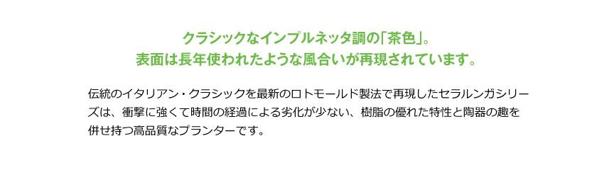 伝統樹脂【長角ミレリゲ100】