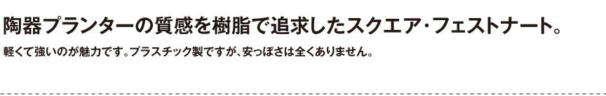 伝統樹脂【スクエア・フェストナート】