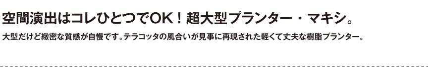 伝統樹脂【マキシ】